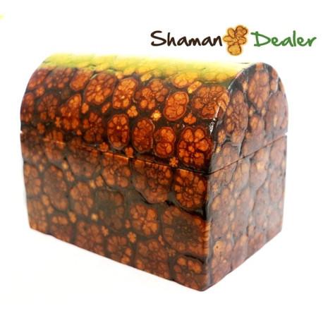 Ayahuasca wooden coffer box handmade AYAHUASCA ART