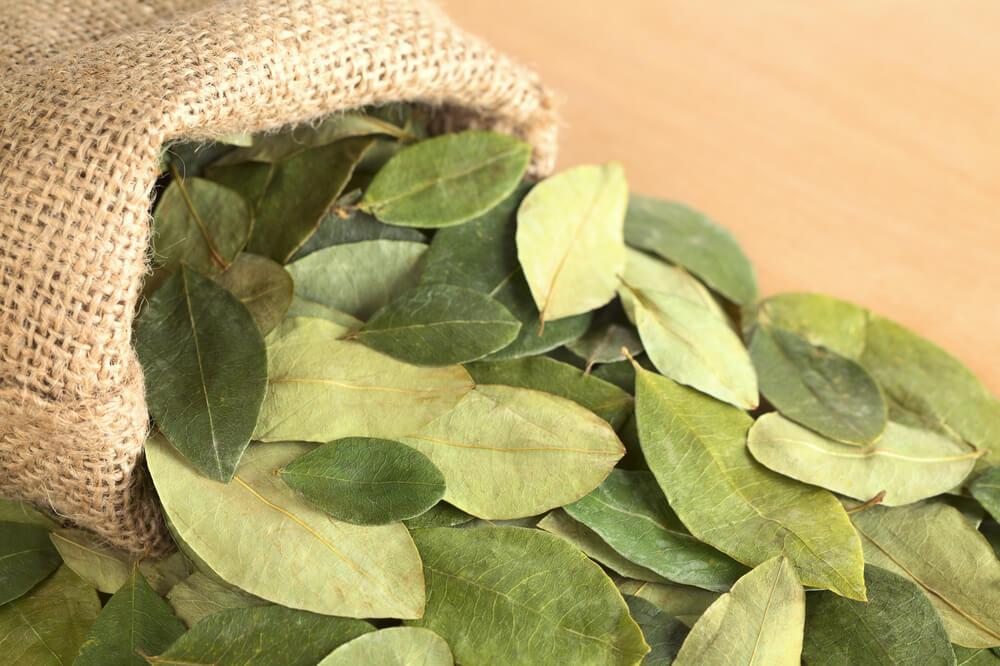 Legal coca leaf, coca tea, coca powder, coca capsules, traditional use