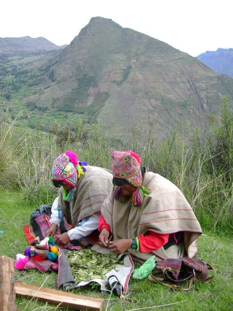 The Peruvian Shaman and the History of Medicinal Plants