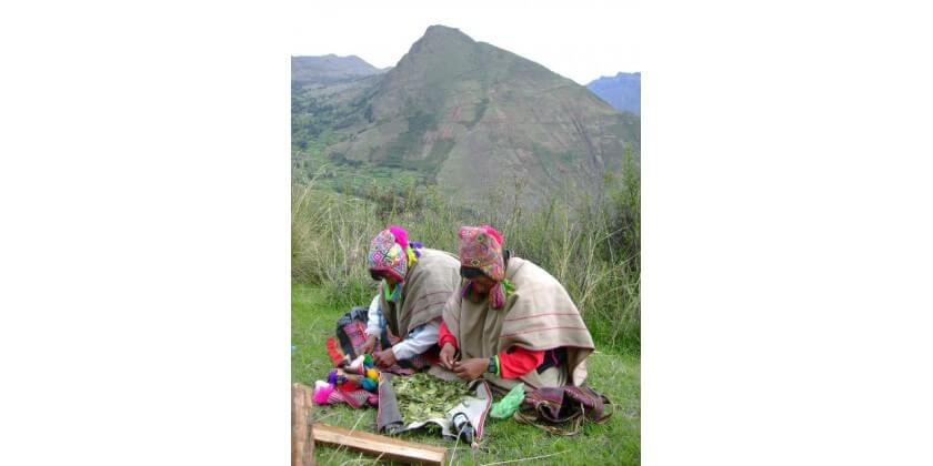 The Peruvian Shaman and the History of Medicinal Plants...